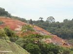 Mining in the Malaysian rainforest