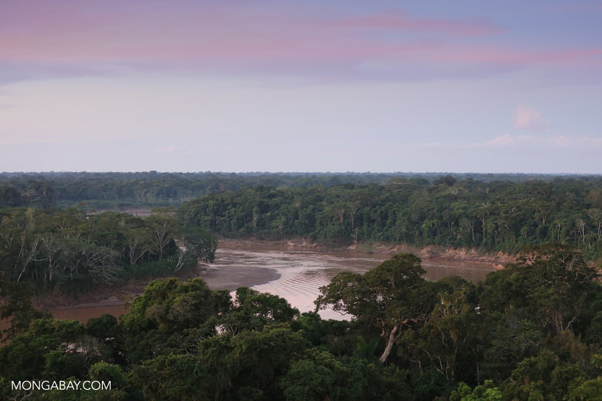 Tambopata River in Peru. Photo by Rhett A. Butler